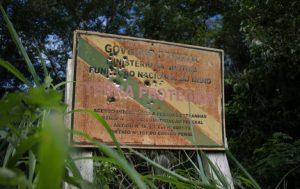 """Brasile: """"L'allevamento illegale favorisce la distruzione della foresta amazzonica"""""""