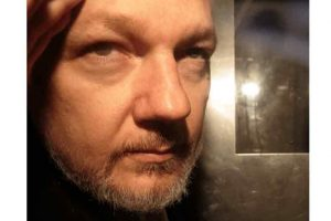 Deputados europeus recusam extradição de Assange por violar direitos