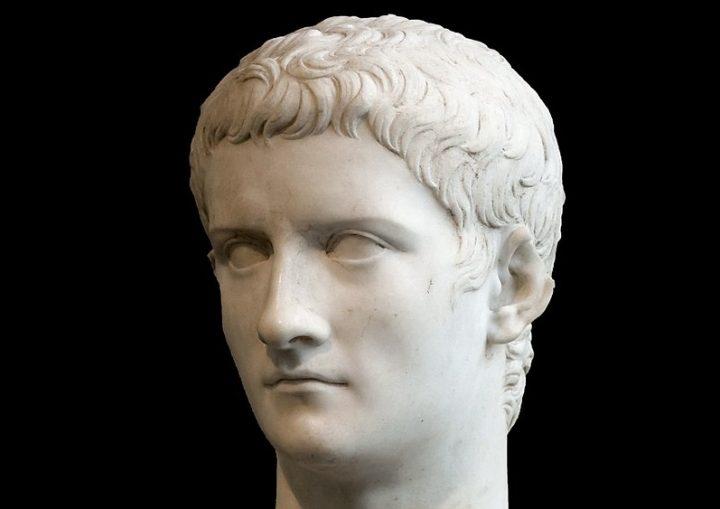 Dal cavallo di Caligola ai leghisti in Parlamento
