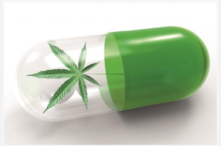 Patente e cannabis terapeutica
