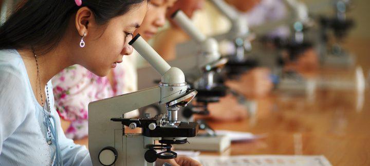 Em dia mundial, ONU incentiva uso de ciência para a paz e desenvolvimento
