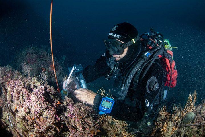"""L' operazione """"Mare Caldo"""" misura gli impatti dei cambiamenti climatici sui nostri mari"""