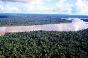 [Perú] Hidrovía Amazónica: Las turberas que el Gobierno olvida
