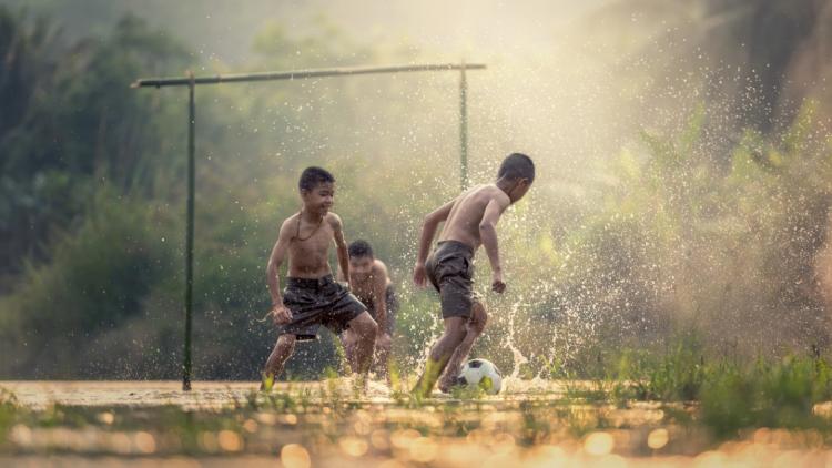 Fair Play im Bildungssystem: Wie wir unsere Schule reformieren können. Von Gunther Moll.