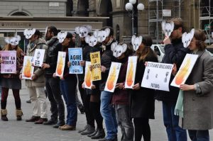 L'Australia è in fiamme! Sit-in a Firenze di Extinction Rebellion in Piazza della Repubblica