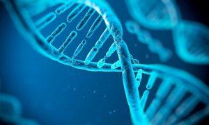 ¿Eugenesia biotecnológica? Digi D8, un Tinder que usará el ADN para evitar hijos enfermos