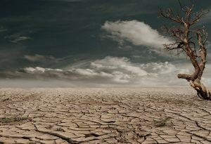 Las mega sequías afectan a los países