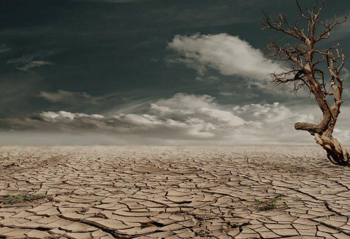 Ondate di siccità travolgono i paesi