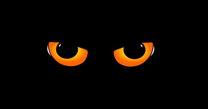 Die Katze ist aus dem Sack (2020: Das Jahr in dem wir unseren Kurs ändern)