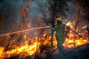 L'Australia va a fuoco e con lei anche il sistema agroalimentare
