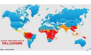 Jérôme Munyangi : « L'Artemisia est la solution pour l'Afrique »