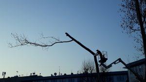 Distrutto all'alba il Parco Bassini a Milano