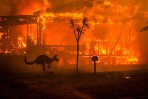 Australia está cometiendo su suicidio climático