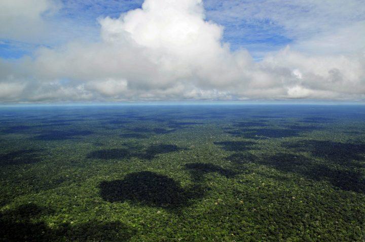 Arremetida contra el Amazonas