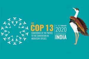 Sessões na Índia Conferência sobre Espécies Migratórias