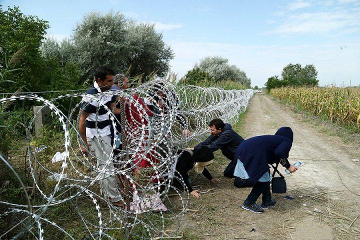 Kapılar açılsın, ırkçılığa hayır! Tüm sığınmacılara mültecilik hakkı!