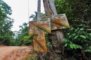 Bolsonaro: políticas genocidas, etnocidas y ecocidas