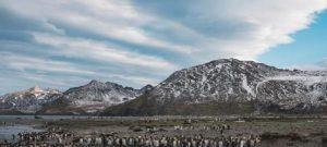 Nuevo Marco Mundial para la biodiversidad busca salvar los ecosistemas
