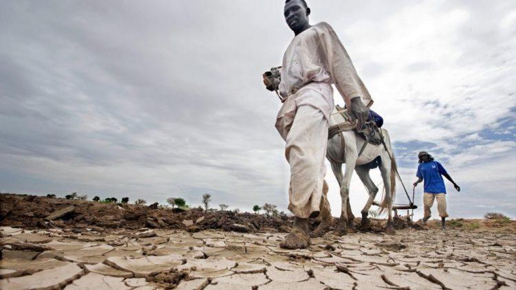 Flucht vor Klimawandel von UN als Asylgrund anerkannt