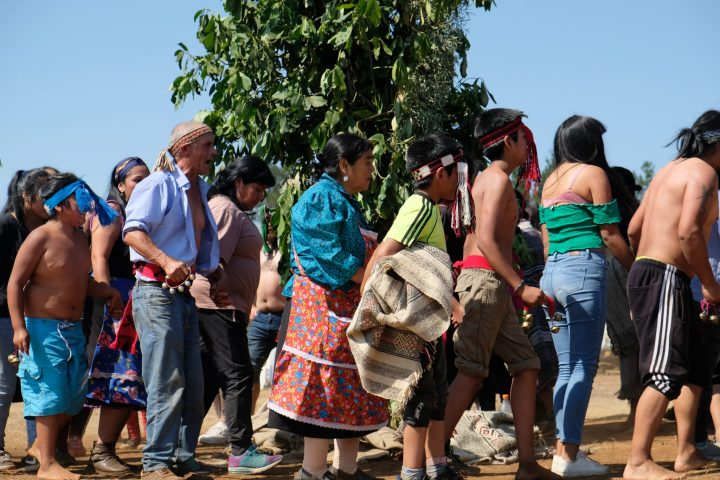 En el corazón del Nguillatún: una forma de resistencia Mapuche