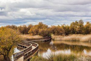 España: ¿Agua para las Tablas de Daimiel? Claro, pero no del Tajo