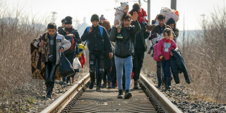 The European Parliament must intervene to stop violence, the use of force and human rights violations at the EU-Turkey border