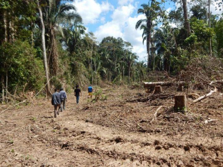[Perú] ¿Pandemia amazónica?