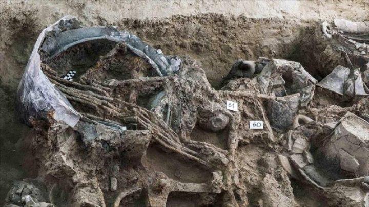 Hallan en Italia una tumba principesca de 2600 años de antigüedad