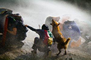 Grafiteros y artistas del despertar social en Chile: Bastián Cifuentes Araya