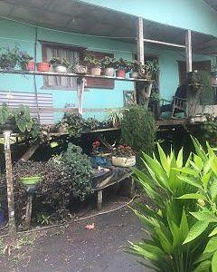 "Campaña de Alimentos ""Mano Vuelta"" Caribe Sur"