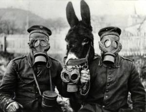 22 avril 1915 : il y a 105 ans, a lieu l'attaque aux gaz chimiques à Ypres (Belgique)