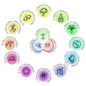 Cambio de paradigma: permacultura es vida