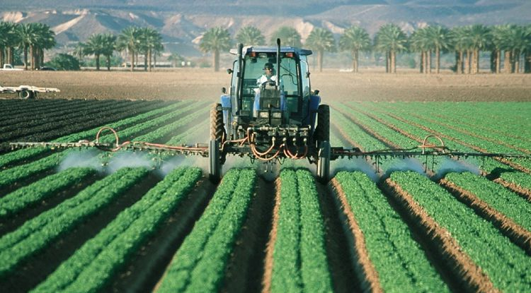 Profitable Pestizide