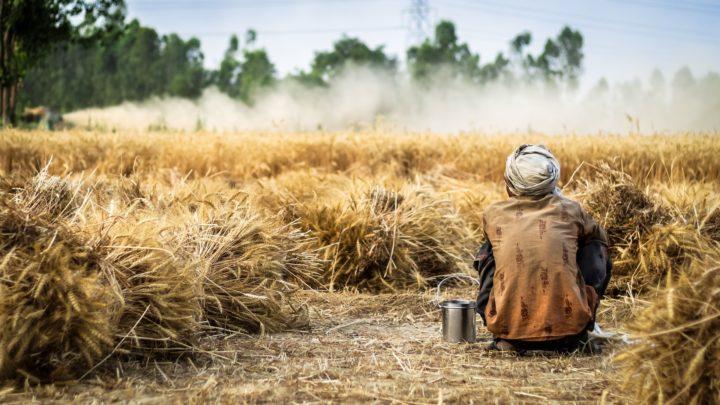 Regolarizzazione: vite umane, non braccia utili nei campi e forza lavoro