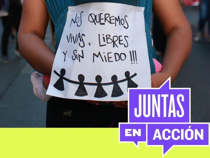 Chile, Juntas en Acción: «Es urgente una legislación integral sobre la violencia de género»