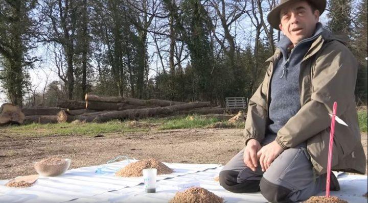 «Les semences libres de Nicolas Supiot, le paysan boulanger»