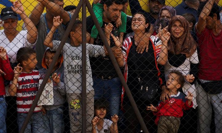 Traffico di organi dei profughi siriani, premiata l'inchiesta della 'Cbs'