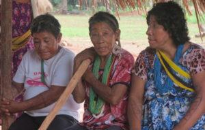 Corona und Indigene: Kürzlich kontaktiertes Volk hat höchste Infektionsrate