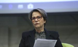 """Ministra da Agricultura é chamada pelos europeus de 'senhora desmatamento' e """"musa do veneno"""""""
