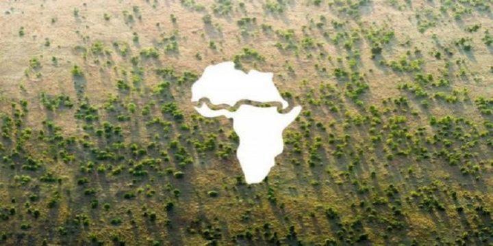 La ONU pide más apoyo para la Muralla Verde en África