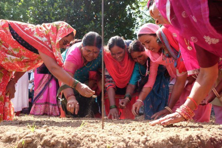 Giornata mondiale Ambiente, un percorso alternativo all'estinzione e alla fuga: ritornare alla terra per rigenerarla e condividerne i frutti
