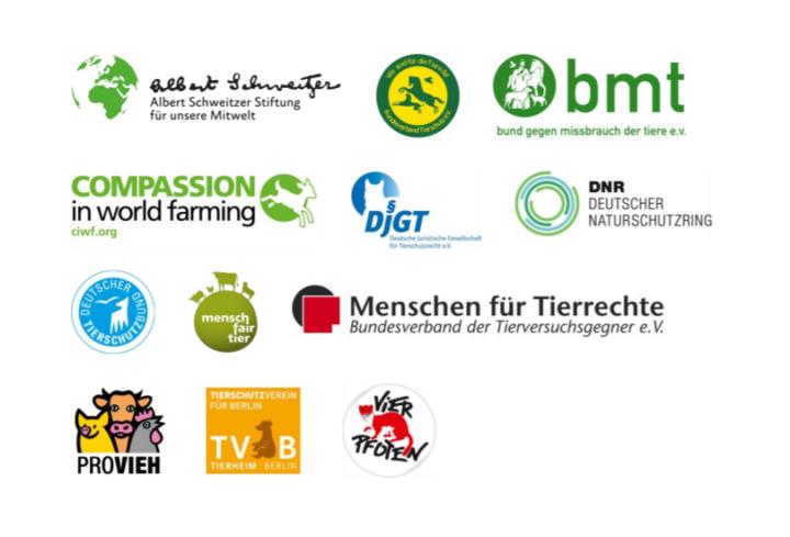 Sauenhaltung in Deutschland Tierschutzorganisationen