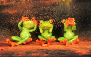 Despliegue inteligente del medidor: Sólo los Verdes pueden detenerlo, pero ¿quieren hacerlo?