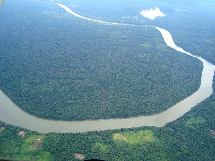Amazonas-Regenwald von lebensbedrohlichen Dürren getroffen