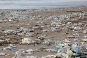 En el Día Mundial del Ambiente: los plásticos de un solo uso son prohibidos en las zonas protegidas de Kenya