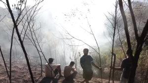 Guaranis que contiveram incêndio no Jaraguá apontam para negligência das autoridades