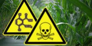 Globales Herbizid-Hüpfen: Brasilien erlaubt Dicamba
