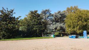 Milano, Parco Bassini sei mesi dopo