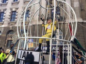 Vivienne Westwood in gabbia per Assange