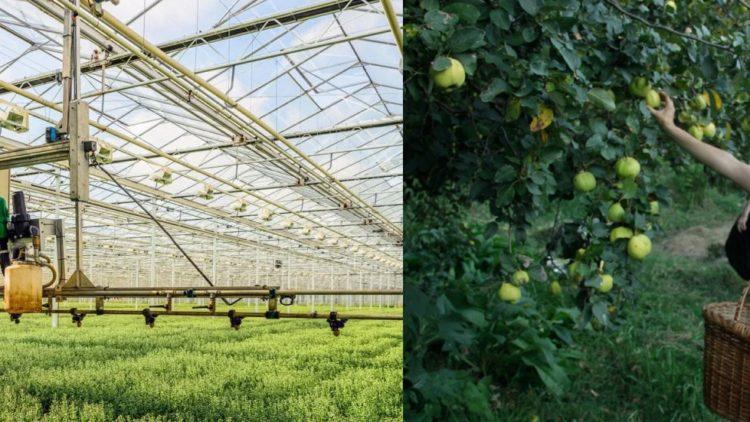 Changement de paradigme : Permaculture contre AgTech